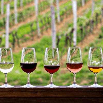 5 Tips for Savoring a Wine Tour